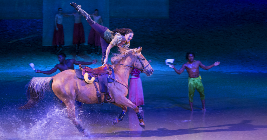 Top 3 Reasons You Must Go VIP To See Cavalia Odysseo 6